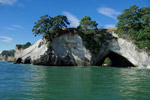 CATHEDRAL COVE SCENIC TOURS - Whitianga