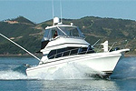 GRAND CRU FISHING CHARTERS - Opua